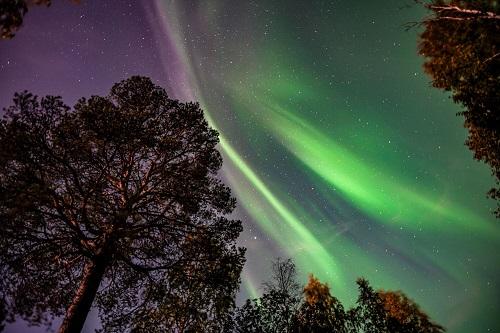 revontuliretki Rovaniemellä